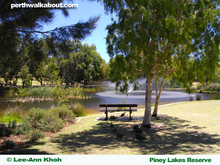 piney-lakes-reserve