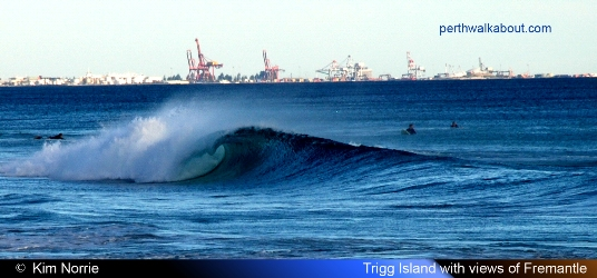 trigg-island-fremantle