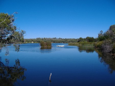 yanchep-national-park-2